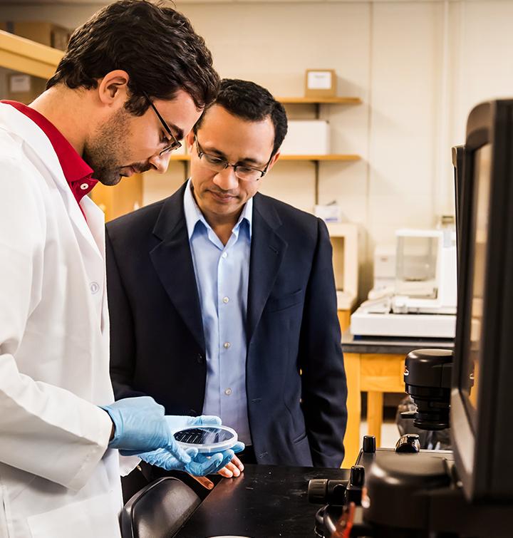 MS in Biochemical Engineering